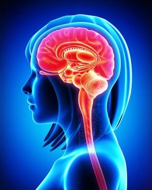 Brain-blue-woman
